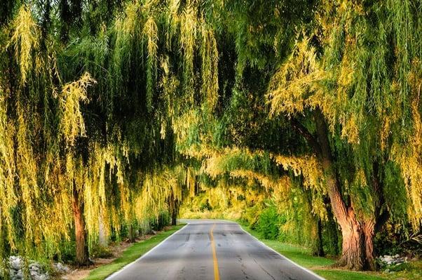 sandusy ohio road
