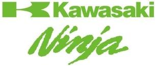 Kawasaki Ninja Logo