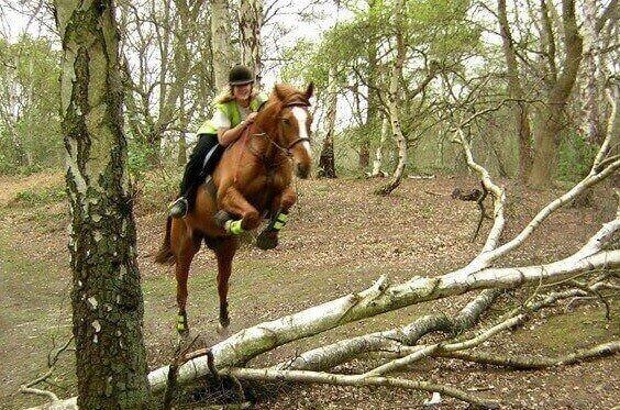 Vanessa Ruck riding a horse