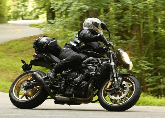 gear chic rider